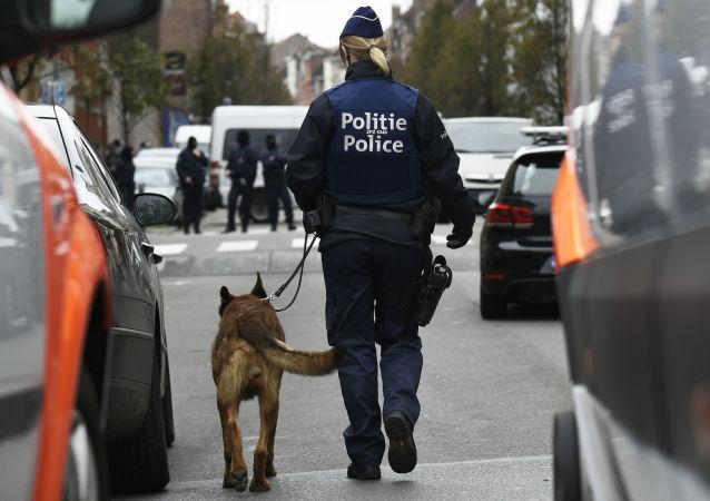 媒体:警方在布鲁塞尔市中心拘捕70多名暴乱分子