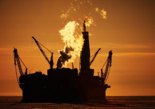 俄专家揭示如何借助海洋蠕虫勘探石油