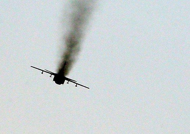 土副总理:击落俄飞机的决定是由土耳其飞行员做出的