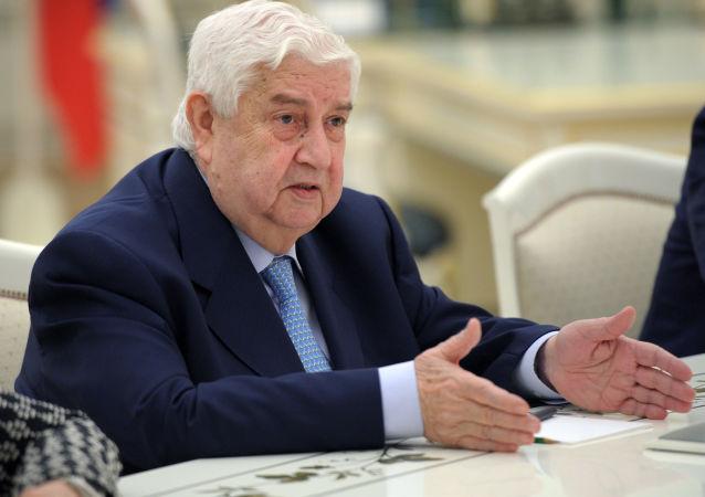 叙利亚外交部长瓦利德•穆阿利姆