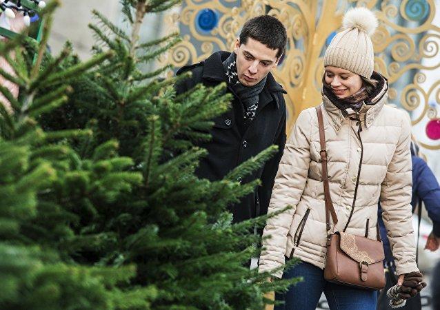 大多数俄罗斯人计划在家迎接新年与假期