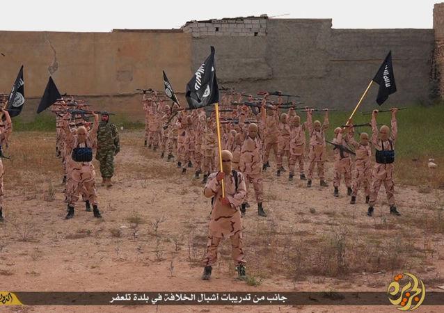 研究:共有4.7万外国人为IS作战  6000人来自原苏联国家
