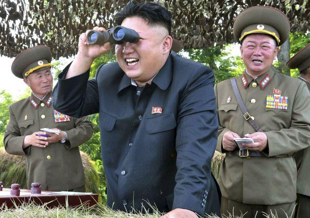 媒体:朝领导人称需进行新的核试验