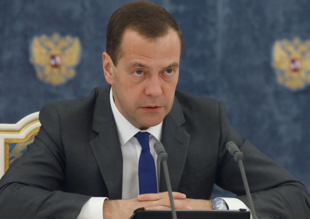 梅德韦杰夫:俄将继续发展绿色经济和能源技术