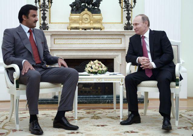 卡塔尔埃米尔与普京通电话时高度评价俄方在叙努力