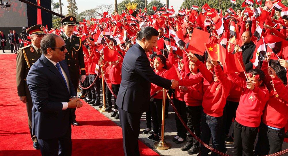 中埃签署20余项合作协议