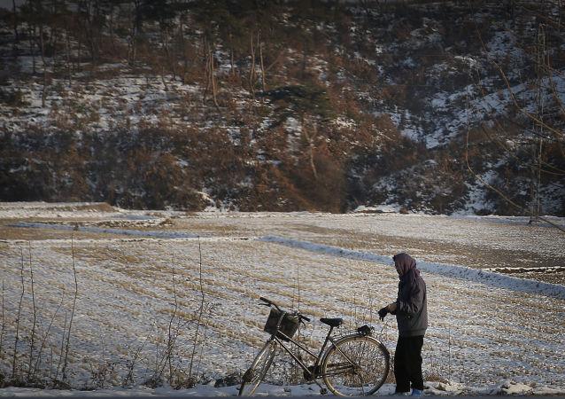 朝鲜政府呼吁居民为发生饥荒做好准备