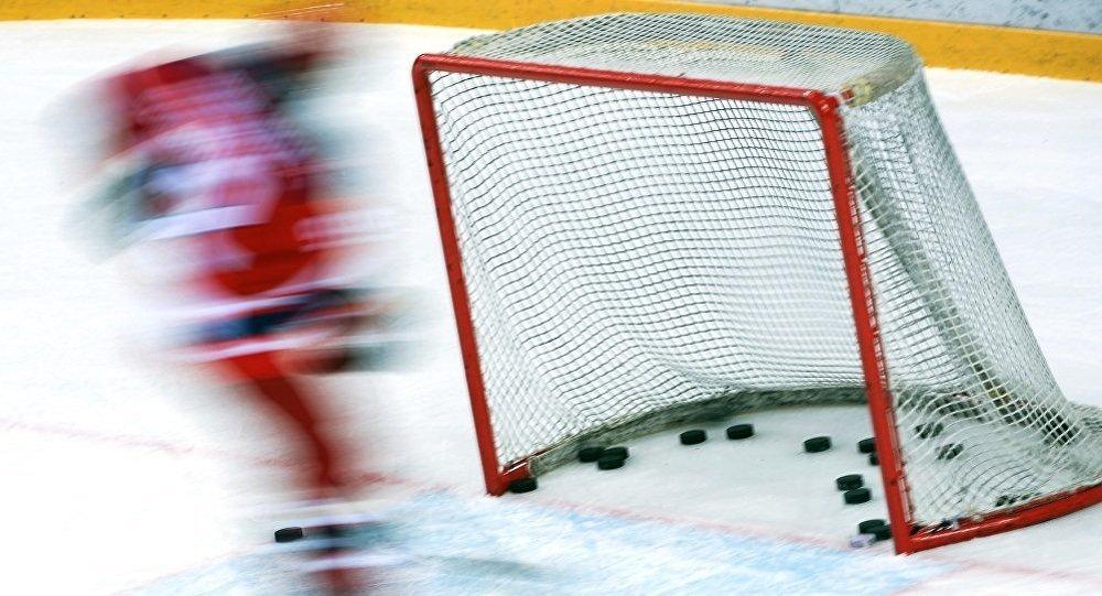 俄阿穆尔州将协助中国推广冰球运动