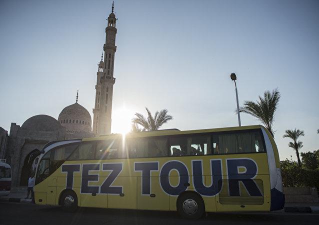 旅游巴士在埃及/资料图片/