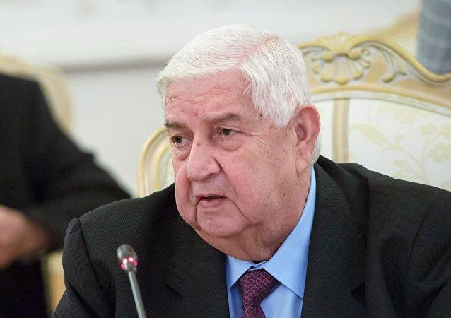 叙利亚外长:叙在联合国要求提供反对派代表名单