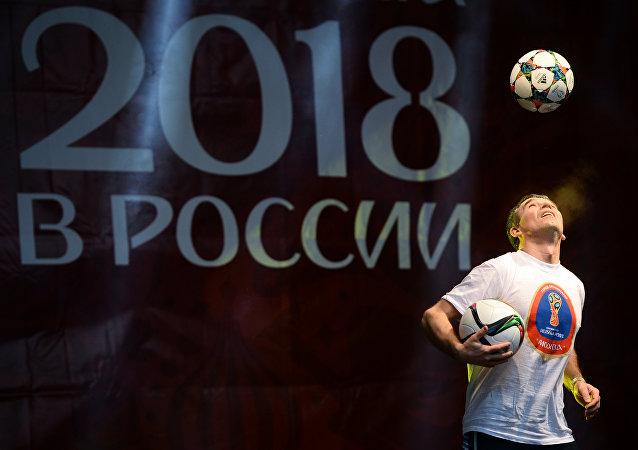 阿穆尔虎、狼、猫入围2018足球世界杯吉祥物的最后评选阶段