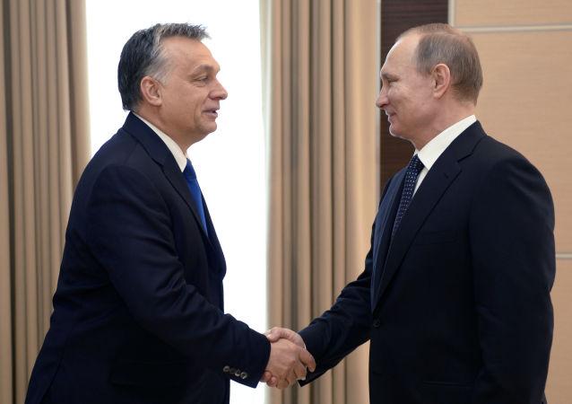 俄罗斯总统弗拉基米尔·普京在会见匈牙利总理维克多·奥尔班时