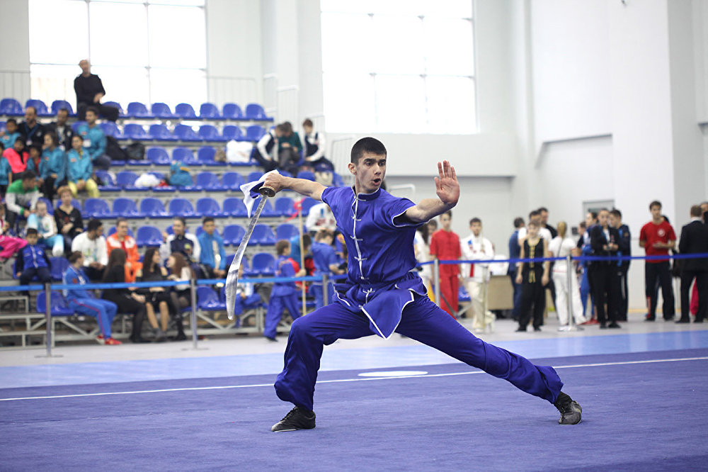 """在莫斯科正在举行""""莫斯科武术之星""""国际比赛。"""