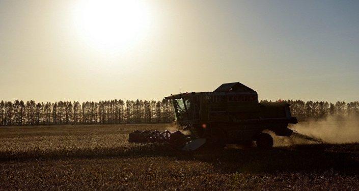 俄罗斯农业