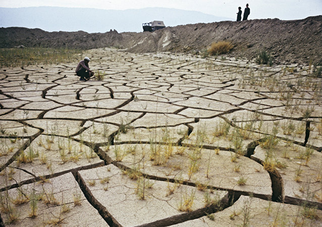 联合国:到2030年全球变暖可能消耗世界经济的2万亿美元