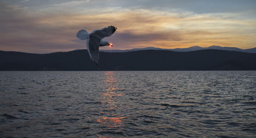 中国投资者将斥资110亿美元在贝加尔湖建旅游集群