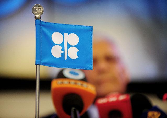 卡塔尔能源大臣:欧佩克正同俄对话 各方努力维护石油市场稳定