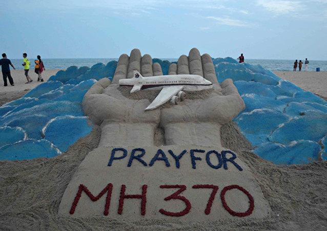 媒体:马航MH370乘客亲属或发现失踪飞机的残骸