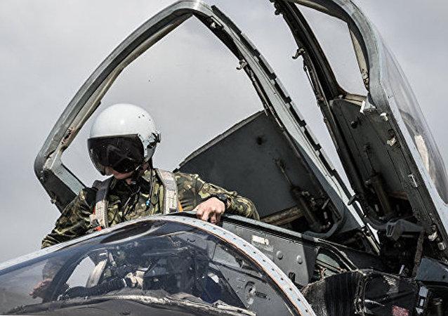 土耳其外长:准备亲自向苏-24战斗机飞行员遗孀道歉