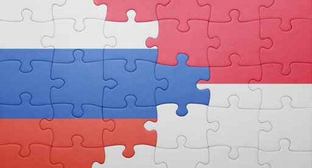 俄罗斯商务委员会预计2017年会成倍提高对印尼投资