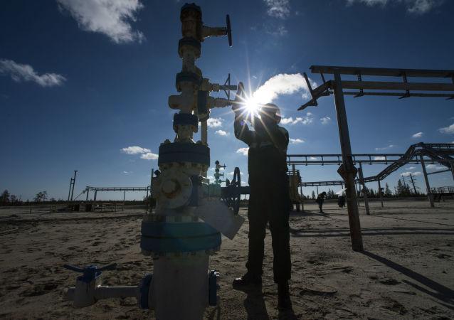 俄能源部:估計獨立企業欲經「西伯利亞力量」出口天然氣150-300億立方米