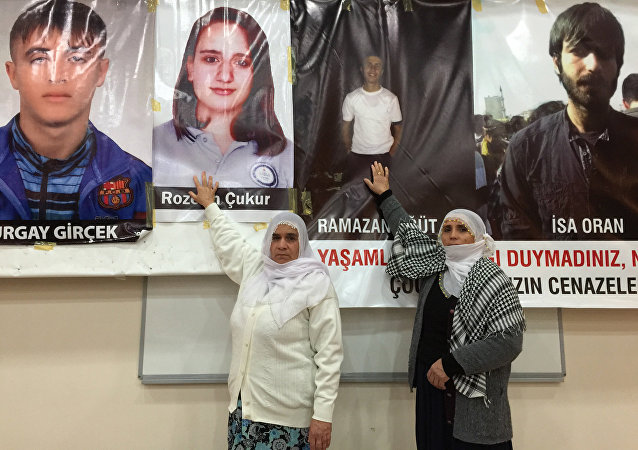 土耳其东南区冲突已造成750名平民死亡