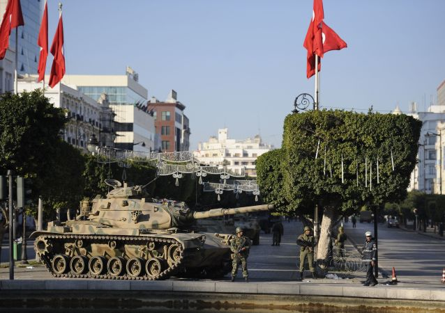 """""""茉莉花革命""""在突尼斯"""