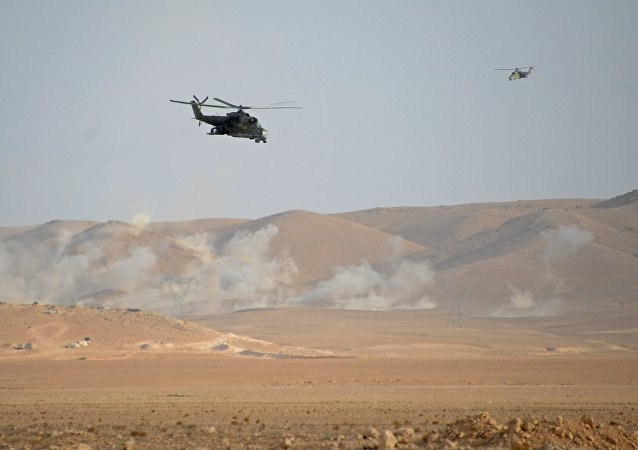 俄联邦国防部:俄罗斯与美国代表就叙利亚违反停战状态进行讨论