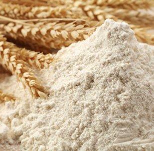 首批俄罗斯小麦粉登陆中国辽宁鲅鱼圈口岸