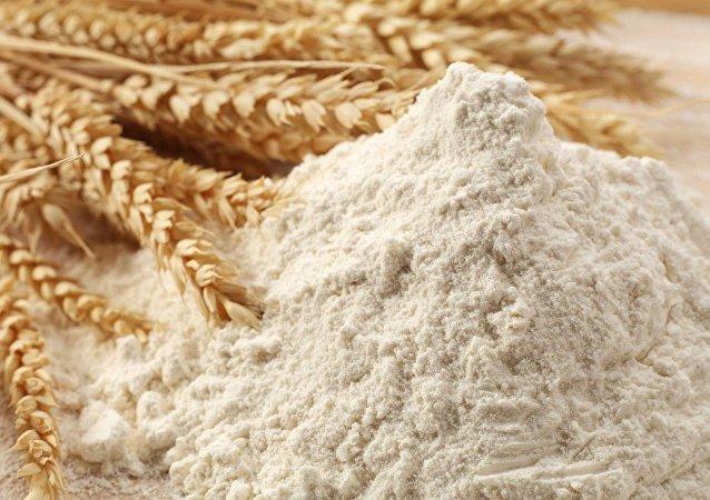 满洲里中俄农产品贸储基地面粉加工车间或于年底前竣工