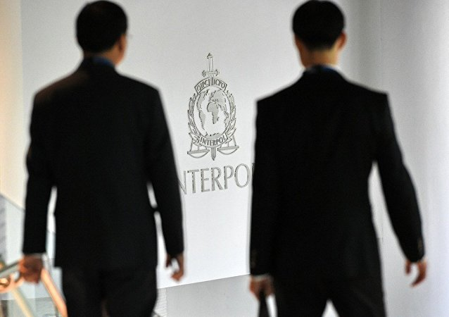 美国挺台湾成为国际刑警组织观察员