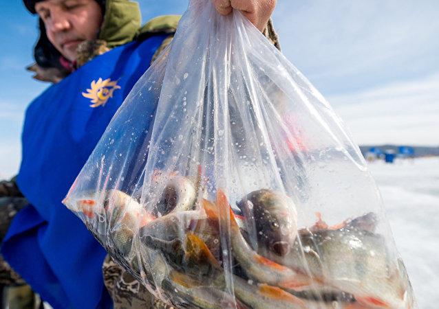 2016年贝加尔湖冰钓比赛