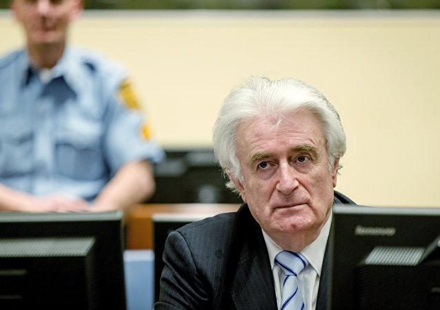 法国议员谈卡拉季奇获刑:可惜只惩罚了交战一方