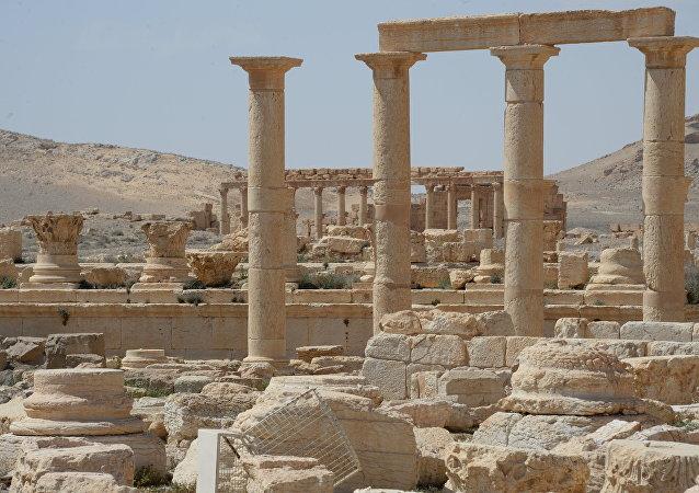 普京祝贺叙利亚总统收复巴尔米拉