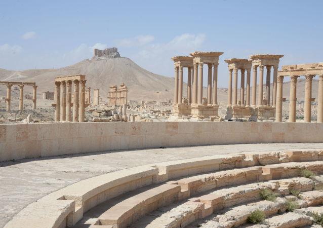 俄艾尔米塔什博物馆:叙利亚巴尔米拉古城修复将是国际运动