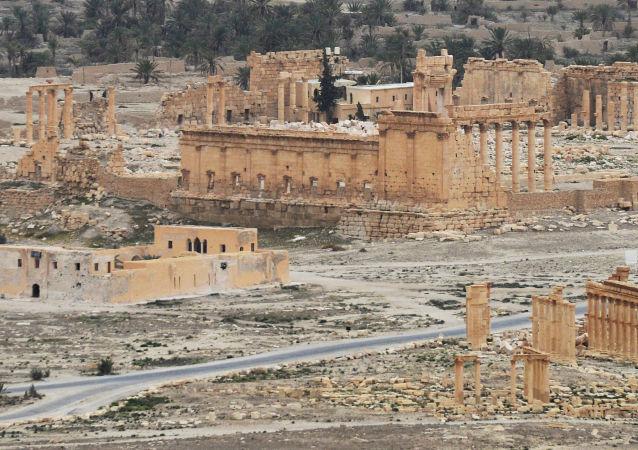 叙利亚政府军在帕米尔近郊俘虏Is头目