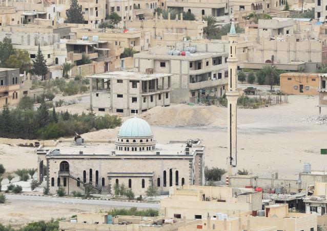 俄驻叙利亚冲突调解中心: 俄空天军没有对巴尔米拉居住区进行打击