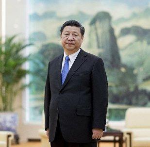 中国国家主席向普京致新年贺电 表达携手努力意愿
