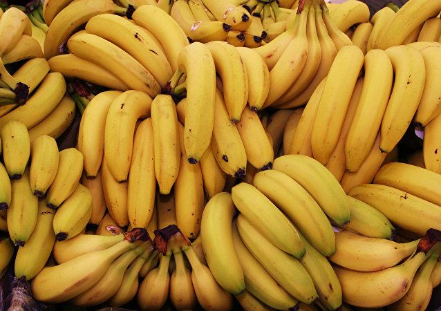哥伦比亚一男子手持香蕉当武器企图抢劫殡仪馆