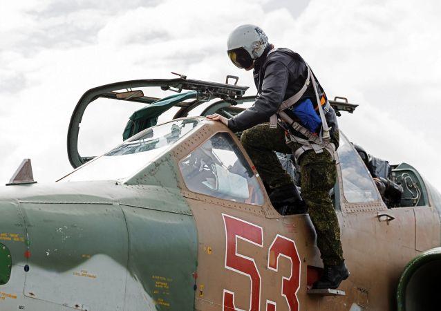 俄防长:俄叙军方18日10时起停止在阿勒颇地区的空中打击
