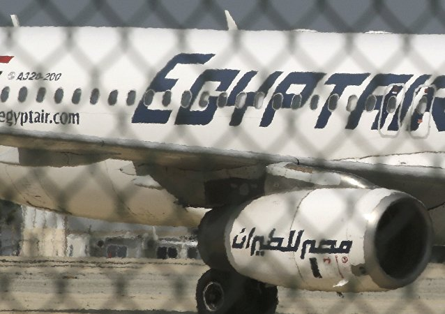 目击者:埃及航空被劫客机起飞前未检查乘客证件