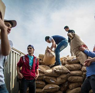 俄军方向叙居民分发近7吨人道主义物资 运送20吨联合国食品
