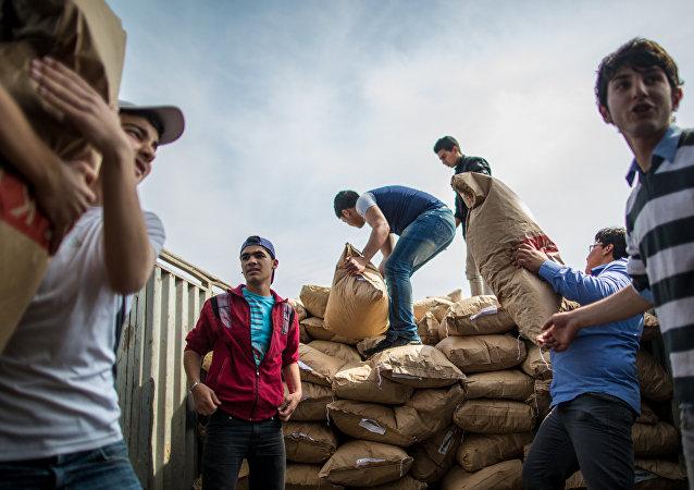 俄军一昼夜向叙2000多平民转交7.9吨人道物资