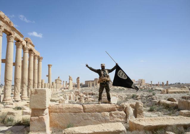 """叙利亚军队在该国南部从""""伊斯兰国""""手中夺回1300平方公里土地"""