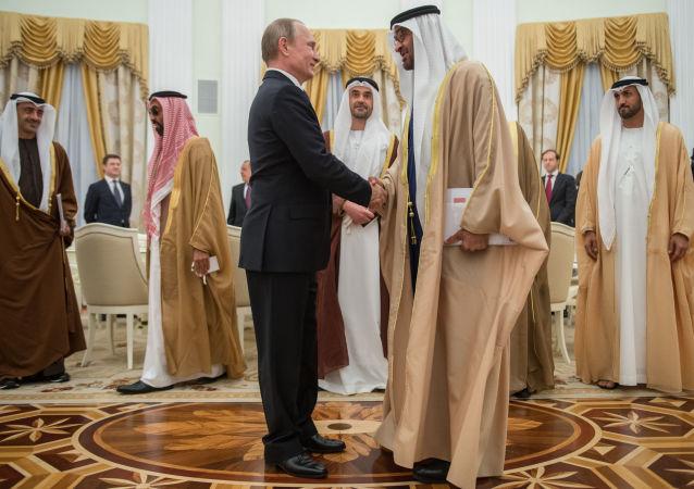 普京与阿布扎比酋长国王储有意将俄阿两国关系提升至战略伙伴关系水平
