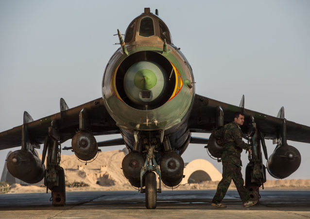 媒体获知击落叙利亚苏-22战机的以色列女军官姓名