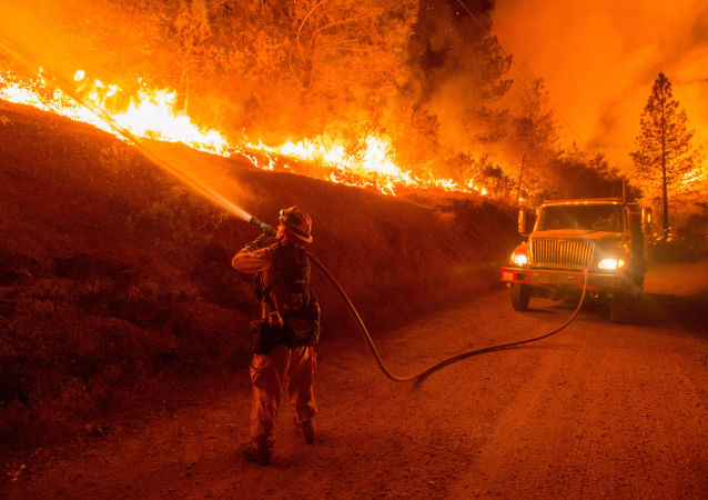 美加州野火所致死亡人数升至29人