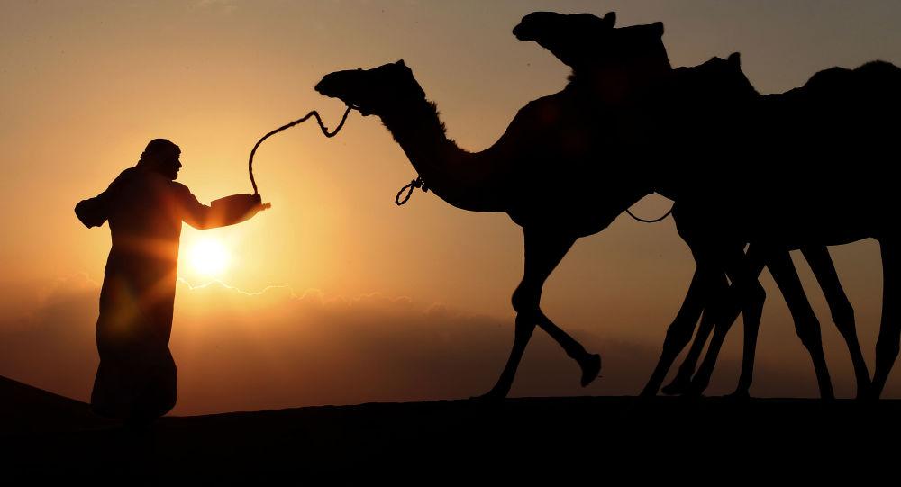 联合国报告显示阿联酋是阿拉伯世界最幸福国家