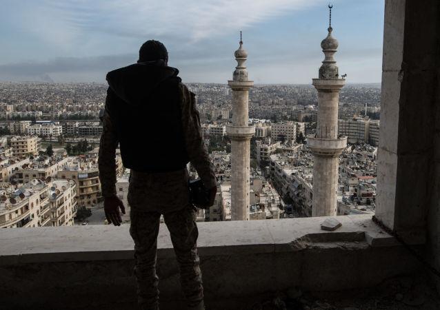 联合国秘书长呼吁俄美尽快就阿勒颇停火达成协议