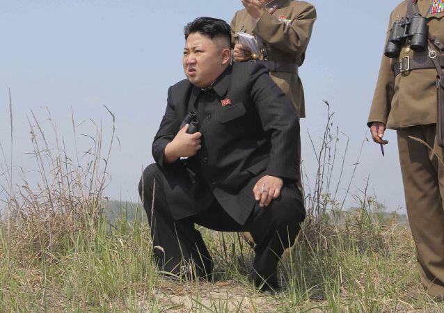 """俄专家:朝鲜15日试射的或为""""舞水端""""导弹"""